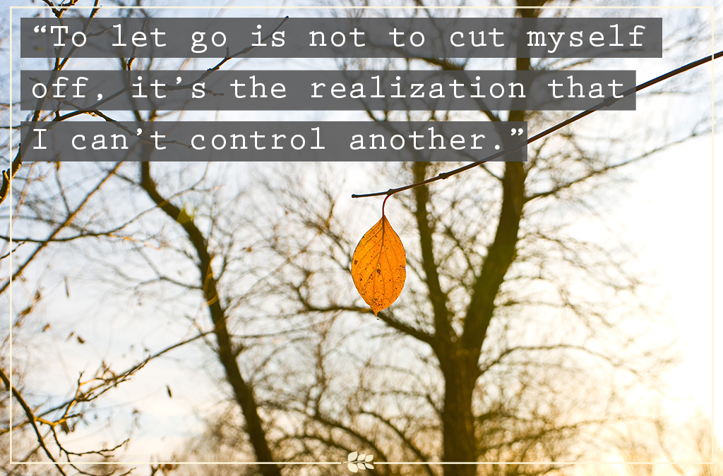 leaf, alone, let go